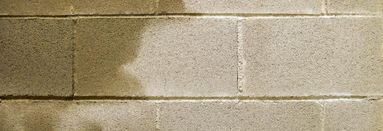 moisture in basement on cement wall