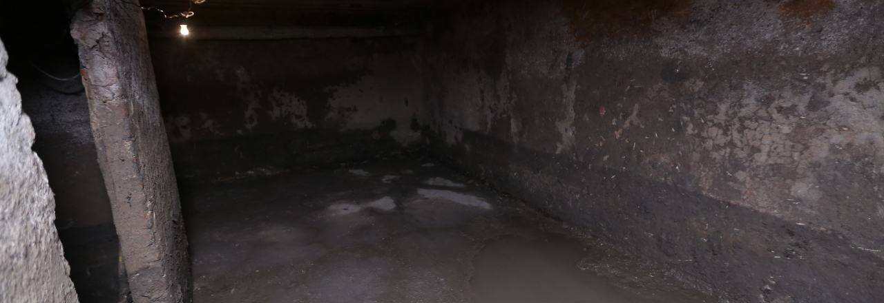 unfinished crawl space