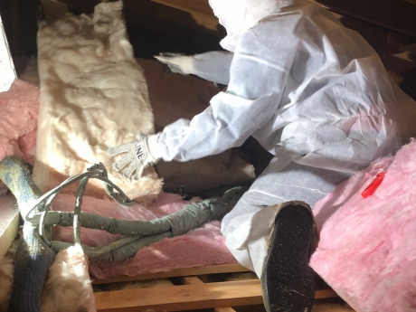 Fiberglass removal, West Townsend, Vermont